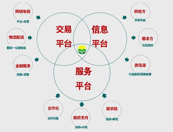 如何做电商网站_天诚网络做电商靠谱吗_做电商数据的网站